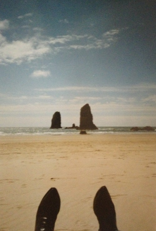 strand in washington state, anno 1994
