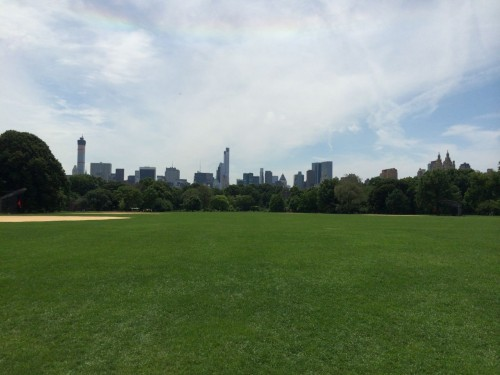blick vom centralpark auf midtown